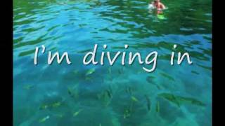Dive Steven Curtis Chapman