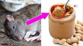 أشياء تسمح منظمة الصحة العالمية بوضعها في طعامنا !! - ماذا نأكل ؟؟