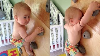 Amazing Baby Rock Climbing Wall | FUNNY Babies Videos Compilation