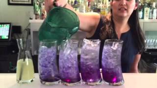 Handcrafted Butterfly Pea Soda @ Asian Mint
