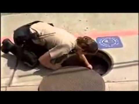 بطة تطلب الشرطة لإنقاذ صغارها سبحان الله