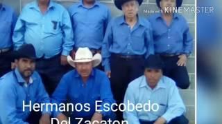 Los Hermanos Escobedo del zacaton La Guaresita