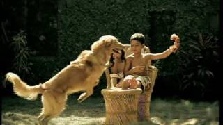 Marco in the 2008 Pedigree Commercial