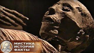 В египетской мумии был обнаружен ортопедический штифт современной конструкции