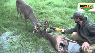 Broseco Ranch Locked Up Bucks