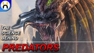 The Science Behind Predators Heat Vision | The Hybrid Theory