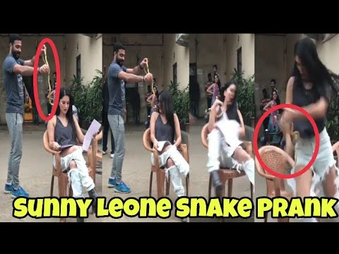 Xxx Mp4 Snake Prank With Sunny Leone Sunny Leon S Reaction Will Make You Lol M Bros Reactions 3gp Sex