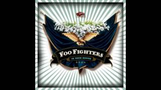 Foo Fighters - Friend Of A Friend (Vocal Cover)