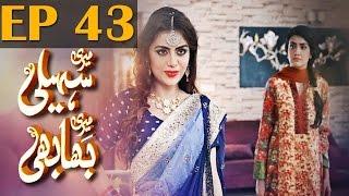 Meri Saheli Meri Bhabhi - Episode 43   Har Pal Geo