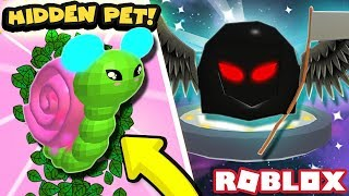 FINDING THE CANDY CAVE WILD PET AND EVOLVING GRIM! | Roblox Pet Trainer Simulator