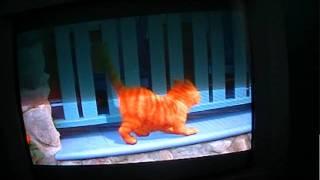 Garfield the movie part 1