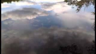 Adyashanti - Prajna-knowing-Not knowing - I dont know!?