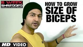 How To Grow Size Of Biceps | Health and Fitness Tips | Guru Mann | Workout Tips