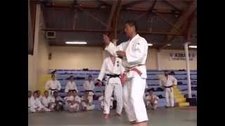 HIROSHI KATANISHI - KO UCHI GARI