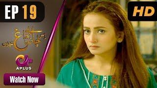 Drama | Is Chand Pe Dagh Nahin - Episode 19 | Aplus ᴴᴰ Dramas | Zarnish Khan, Firdous Jamal