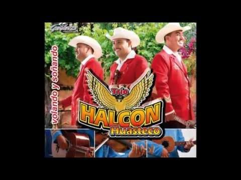 Mix Halcon Huasteco disco completo