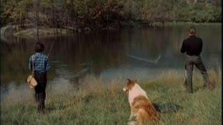 Lassie - Episode #512 -
