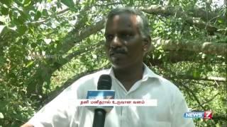 Aranya Forest in Puducherry | Tamil Nadu | News7 Tamil