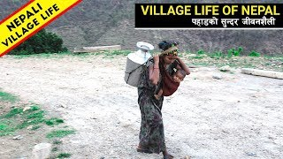 Rural Life of Nepal || Village Life In Nepal