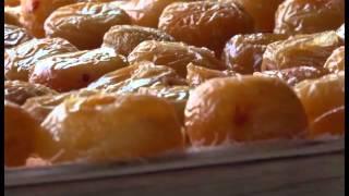 Քրիստինե Ղազարյան, Արագածոտն/չրերի արտադրություն/Kristine Ghazaryan Ashtarak dried fruit SME DNC
