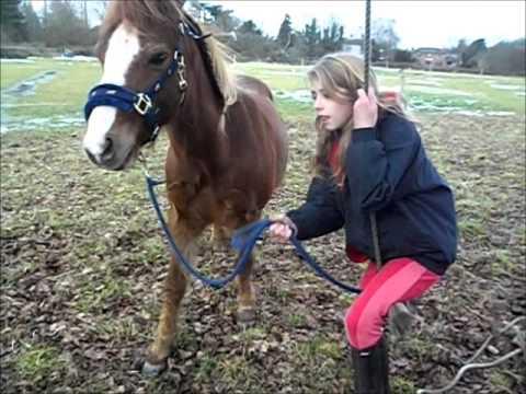 Xxx Mp4 Remix Horse Video X 3gp Sex