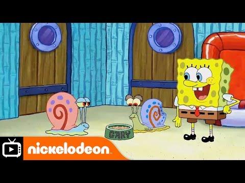 Xxx Mp4 SpongeBob SquarePants Snail Sanctuary Nickelodeon UK 3gp Sex
