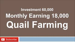 Business idea in India Quial Farming Small Investment High Profit