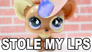 LPS - MY FRIEND STOLE MY LPS!!