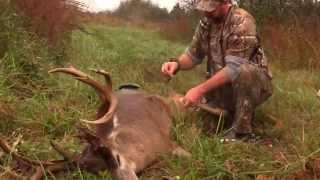 D2W - Paul's 193 Buck