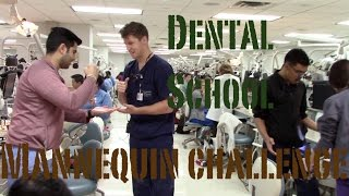 Texas A&M College of Dentistry Mannequin Challenge (Class of 2019)