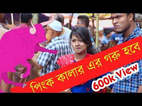 পিংক কালার এর গরু হবে ?    Bangla New Funny Video   Bangla Fun EP 30   Mojar Tv