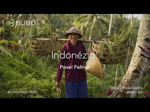 BUBO premietanie: Indonézia - Pavel Fellner