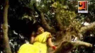 Holodia Pakhi Sonari Boron