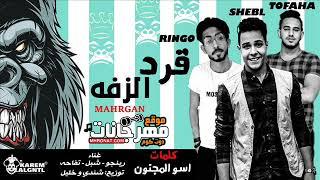 المهرجان اللى هيرقص الفرح | مهرجان قرد الزفه - رينجو و شبل و تفاحه | توزيع خليل و شيندى