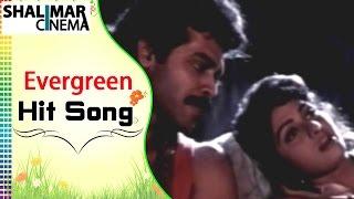 Evergreen Hit Song of The Day || Jaamu Rathiri Video Song || Shalimarcinema || Shlimarcinema
