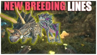 ENEMY CRYO OPENING 2! NEW BREEDING LINES! SMALL TRIBES S4E40 | Ark: Survival Evolved