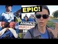 EPIC Slaughterhouse Shutdown! Police, TV News, Activists