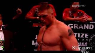 UFC: Brock Lesnar vs. Shane Carwin Recap
