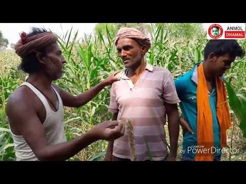 Xxx Mp4 26 मकई के खेत में का होत बा देखिये भविष्य है बिहार की हे भगवान कुछ तो करो इनको Anmol Dhamal 3gp Sex