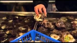 اكبر سوق سمك في العالم