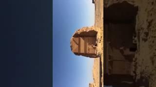 """""""الصقور السعودية"""" تستهل أولى مشاركاتها بملتقى الفرسان الرابع بالعلا منظر ولا أروع"""