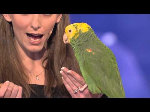 Konuşan Kuşun İnanılmaz Performansı Yetek Sizsiniz Amerika