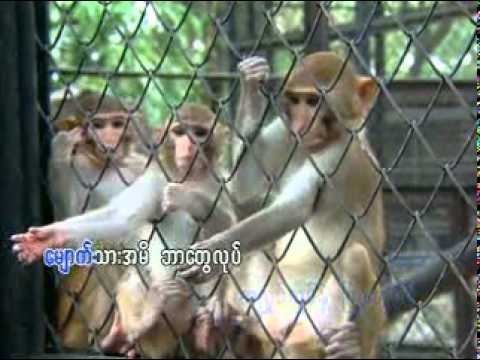 Xxx Mp4 Myanmar Children Songs သူတို႔ဘဝနဲ႔ သူတို႔ေတြ 3gp Sex