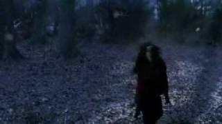 Van Helsing vampire attack.avi