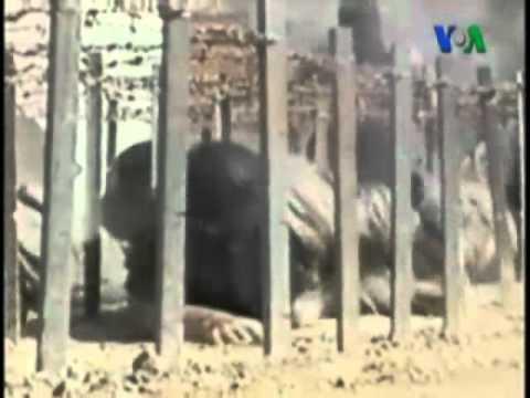 Bin Ladin'in Ölümü El Kaide'ye Büyük Darbe Vurdu mu?