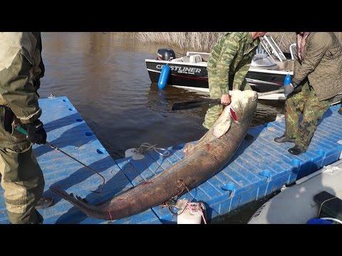 открытие сезона рыбалки в волгограде
