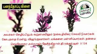 அல்லாஹ் நேசிக்கின்றான் உரை கோவை ரஹ்மத்துல்லாஹ் TNTJ மாநில செயலாளர்.mp4