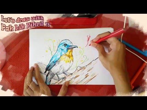 Xxx Mp4 Menggambar Burung Biru Let 39 S Draw With Pak Lik Fihril Episode 3 3gp Sex