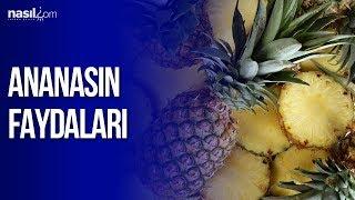 Ananasın faydaları   Sağlık    Nasil.com