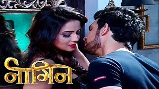 Naagin - 24th April 2016 : Ritik Tried to Kill Shivanya; Sesha Murdered Ankush!